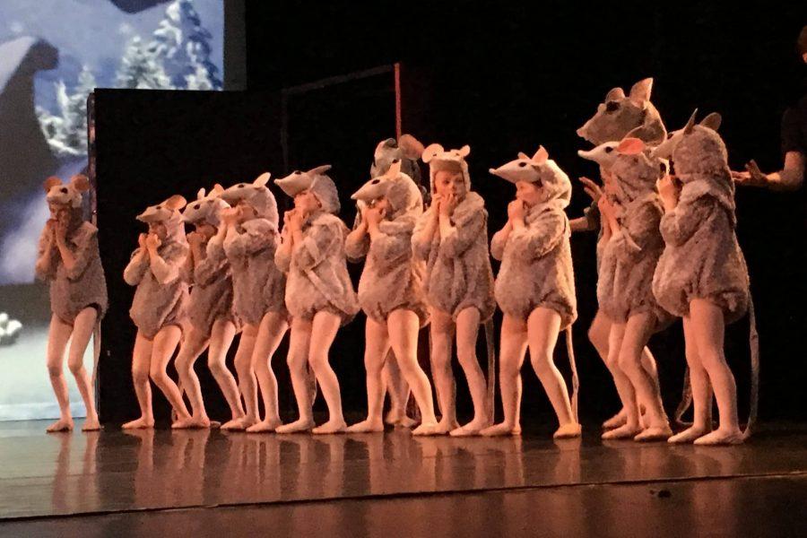 Rescidency-Ballet-2018-4